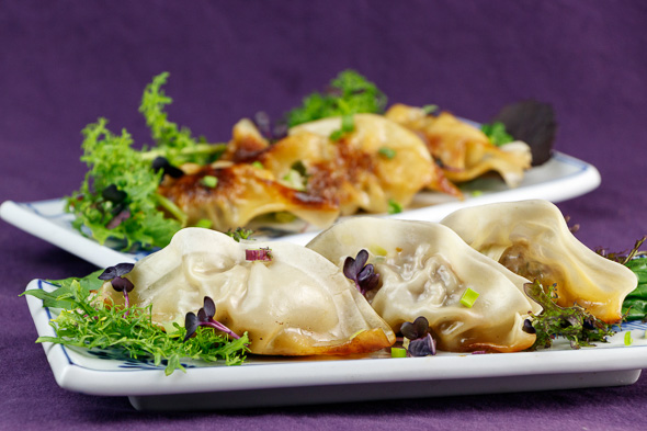 Herby-Lamb-Gyoza-Nasci-Pear-Leek-Salad-5