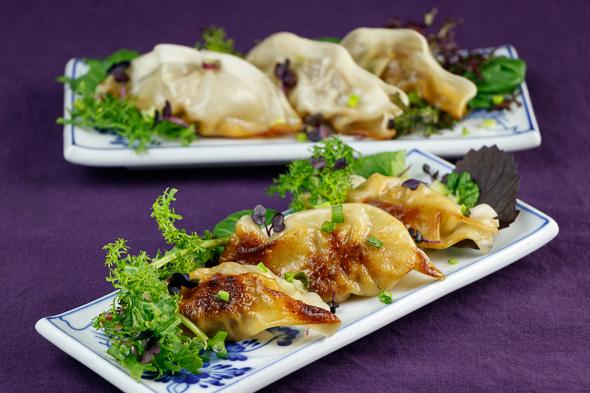 Herby-Lamb-Gyoza-Nasci-Pear-Leek-Salad-6