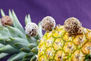 Pineapple-Coconut-Virgin-Colada-Energy-Balls-2