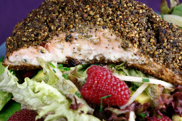 Matcha-Tea-Crusted-Salmon-Fennel-Avocado Salad-Raspberry-Lime-Dressing-4