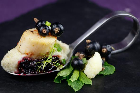Scallops-Blackcurrant-Sauce-Cauliflower-Fennel-Purée-1