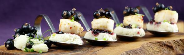 Scallops-Blackcurrant-Sauce-Cauliflower-Fennel-Purée-2