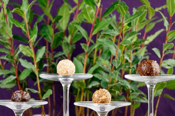GW2-Gift-Energy-Coconut-Mango-Blueberrry-Fig-Apple-Cheery-1